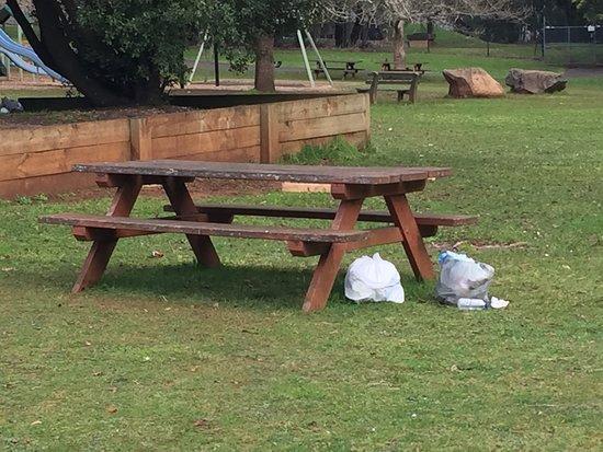 Silvan Reservoir Park: people leaving their trash behind...not cool!