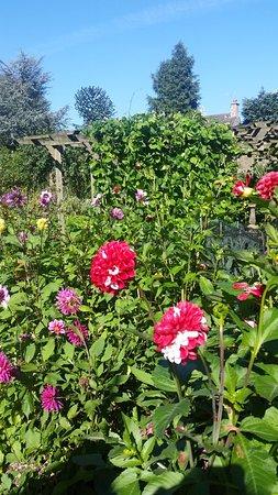 Baslow, UK : Garden