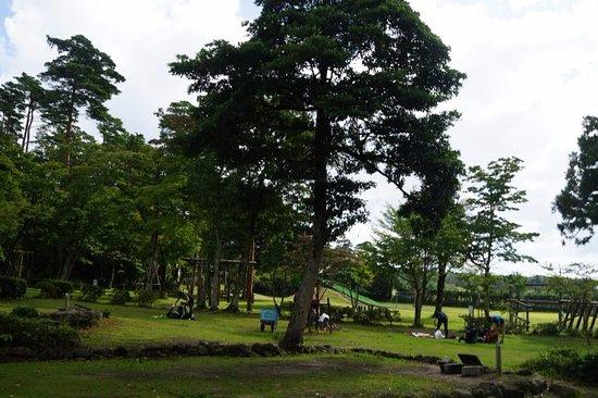 Morinokuni