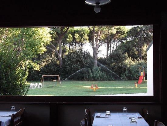 Castagneto Carducci, Italia: La sala da pranzo guarda sul grande giardino
