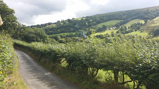 Llangattock, UK: View Up the Valley from the Cottage
