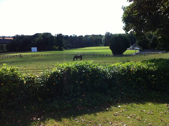 Thornhill Arms: View from the terrace.