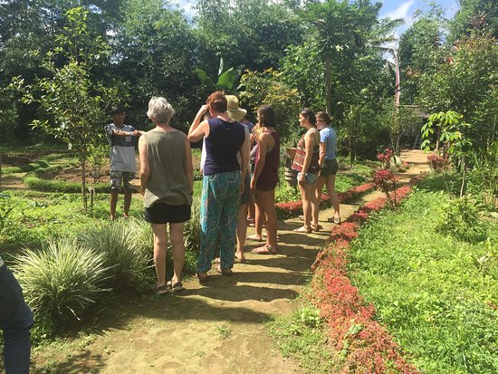 Balinese Farm Cooking & Organic Farm