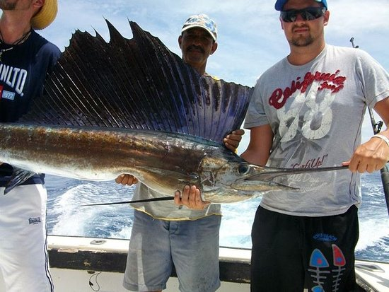 Lo mejor picture of cayo guillermo cayo guillermo for Fishing in cuba