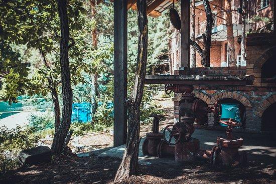Belogore, Russland: Барбекю/Barbeque
