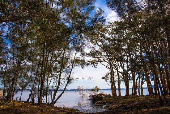 Hawks Nest, Australia: photo2.jpg