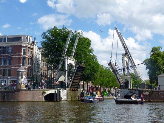 Rederij Kooij - Boat Tours: photo1.jpg