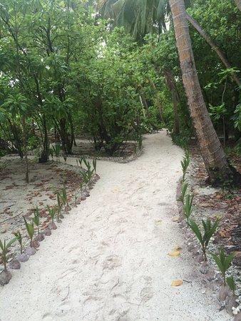 Dhaalu Atoll: aaaVeee Nature's Paradise