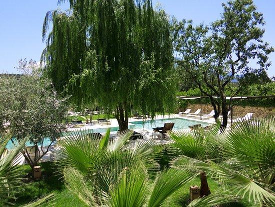 دوماين ماليكا - جيست هاوس: jardin piscine 1