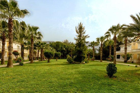 Mountain View Hotel & Villas : Garden