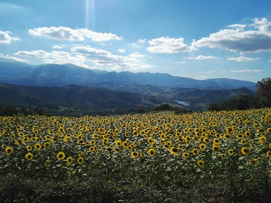 Smerillo, Italia: IMG_20160813_172311_large.jpg