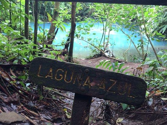 Tenorio Volcano National Park, Kostaryka: Laguna