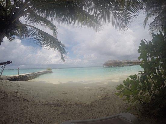 Veligandu Island Resort & Spa: photo2.jpg