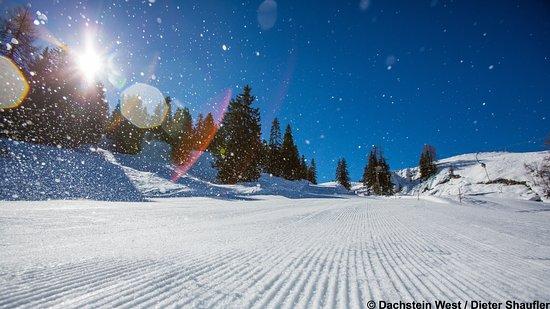Russbach am Pass Gschutt, Österreich: Skiurlaub Skiregion Dachstein West