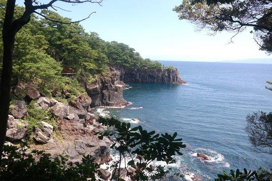 絶景 - Picture of Jogasaki Beach, Ito - TripAdvisor