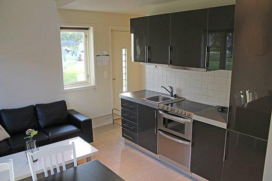 Vestfold, Norwegen: Fullt innredet leilighet med komplett kjøkken.