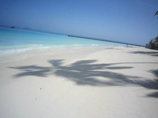 Constance Halaveli: plage de l hôtel