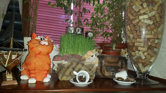 Cafe Kot na Kryshe