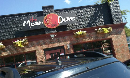 Amherst, MA: The Moan and Dove