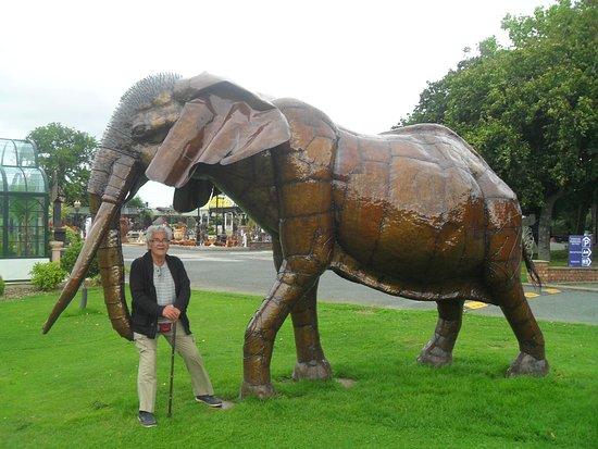 Oswestry, UK: Amazing Elephant.