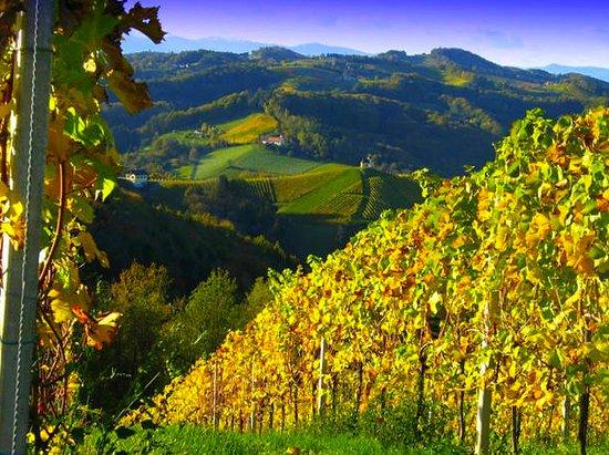 Die Suedsteirische Weinstrasse