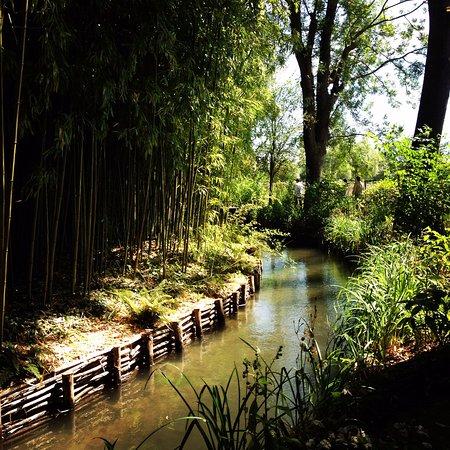 Monet-museet i Giverny: Le jardin japonais