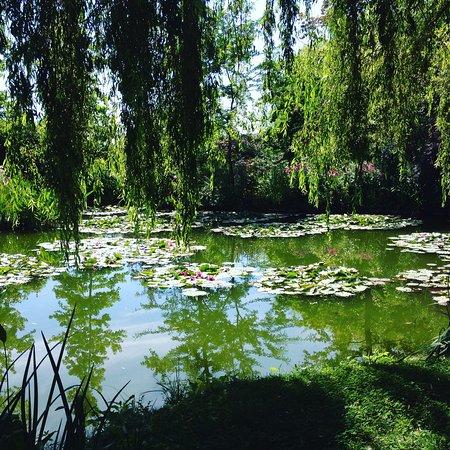 Monet-museet i Giverny: L'étang aux nymphéas