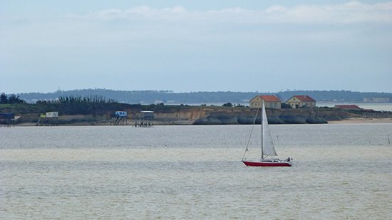 L 39 ile madame carrelet et vue sur fort boyard photo de office de tourisme rochefort ocean - Office de tourisme rochefort ocean ...