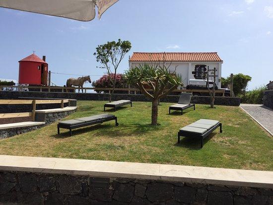 Cedros, Portugal: photo1.jpg