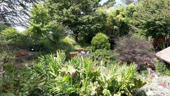 Jardin Botanique : 20160831_142329_large.jpg