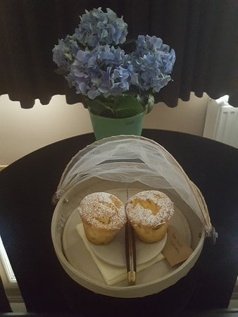 Huis Koning: Our apple cakes dessert in our room