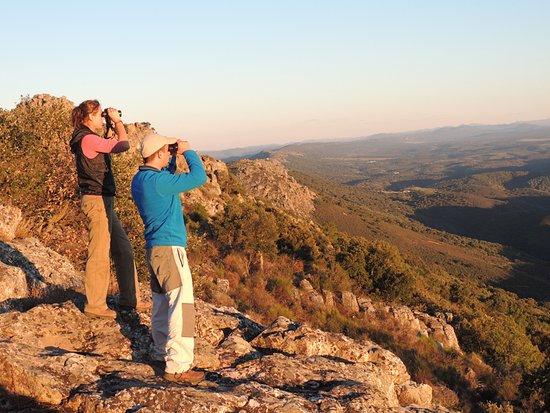 Iberian Nature - Servicio de Guias de Naturaleza