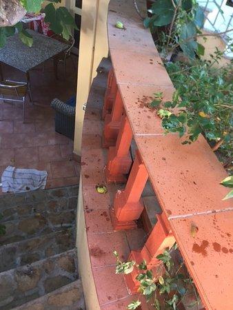 Foto de B&B Casa Derosas