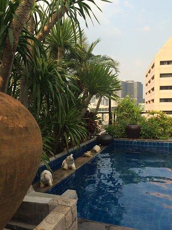 The Siam Heritage: プールは大きくはないです。