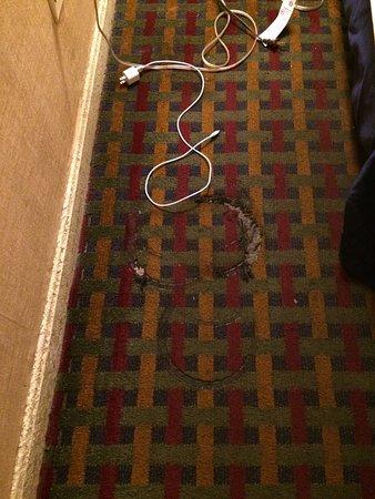 Boston Motel : Room floor