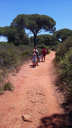 Camping El Faro : camino a la cala