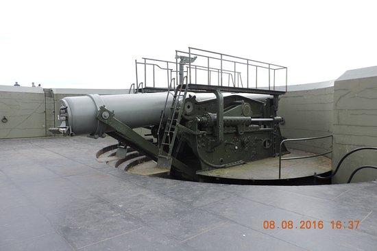 Coupeville, WA: 另一未昇起的+时大炮
