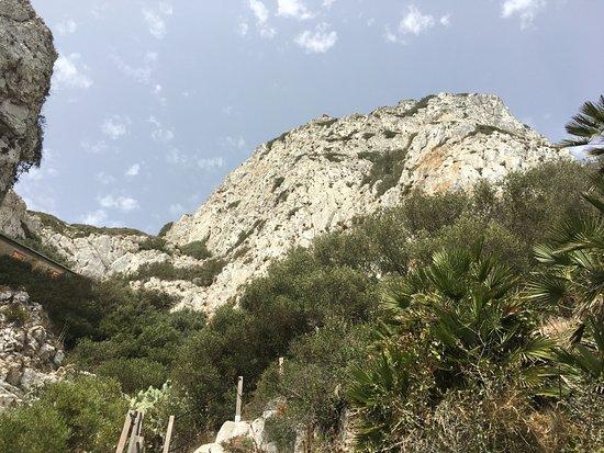 Mediterranean Steps : Steep descent, but worth doing!