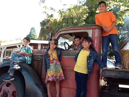 Oak Glen, Californien: photo1.jpg