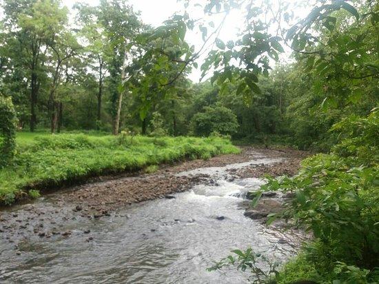 Tansa Dam