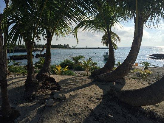 Grand Sirenis Riviera Maya Resort & Spa: photo2.jpg