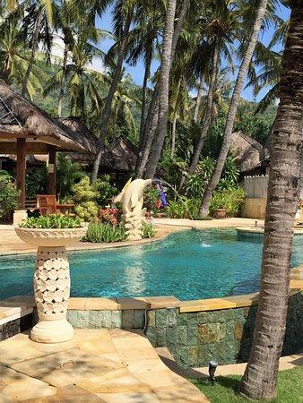 Palm Garden Amed Beach & Spa Resort: pool