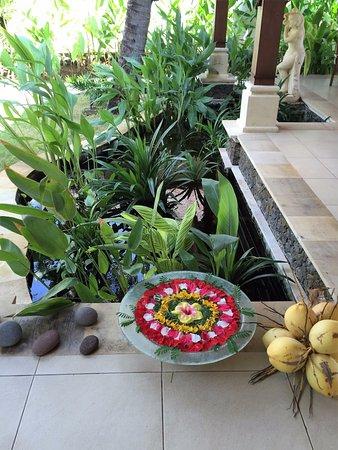 Palm Garden Amed Beach & Spa Resort: gardens