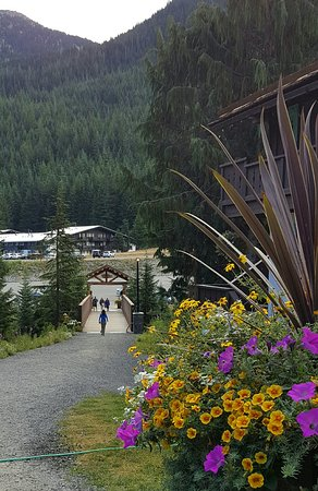 Crystal Mountain Hotels Alpine Inn: 20160827_224653_large.jpg