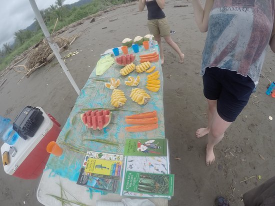 Dominical, Costa Rica: Table of fruit and refereshments at the end of the tour