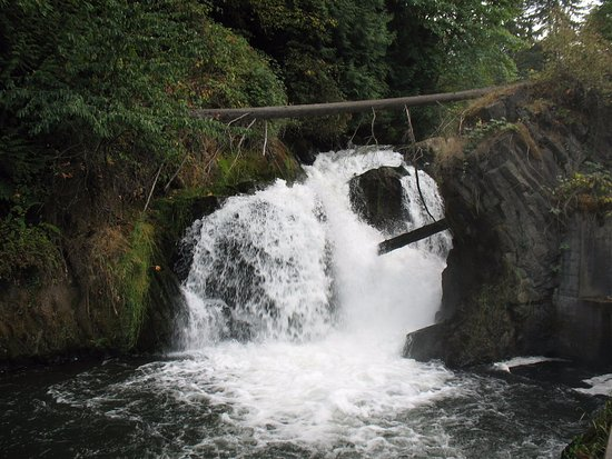 ‪‪Tumwater‬, واشنطن: A second set of falls down stream‬