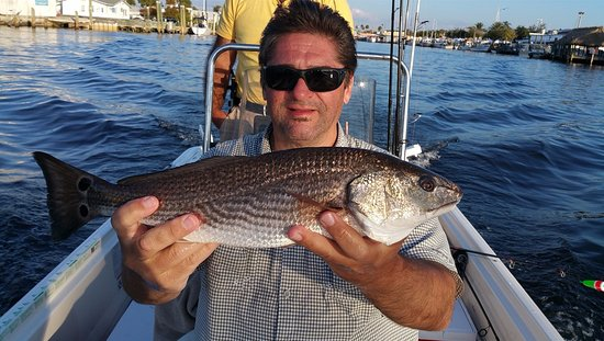 Jimmy 39 s fishing charters tarpon springs fl rt kel sek for Tarpon springs fishing charters