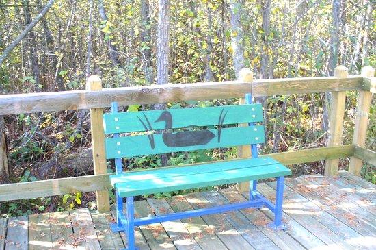 Danville, Canada: Sentiers qui font le tour de l étang et des endroits pour faire de l observation et s assoir .