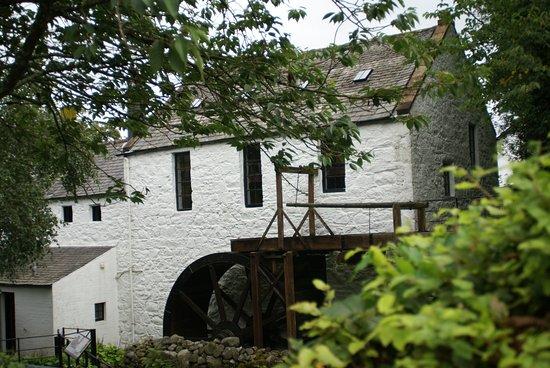 New Abbey, UK: Blick von Aussen auf das gegenläufige Mühlrad (Besonderheit für die Fachleute 9 ! Speichen).