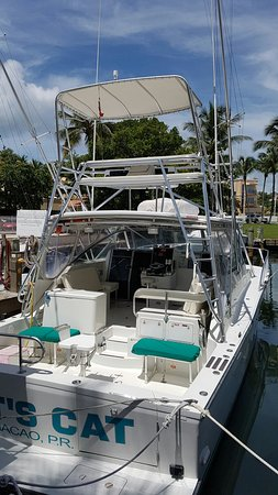 Humacao, Puerto Rico: matts cat picture maragata charters